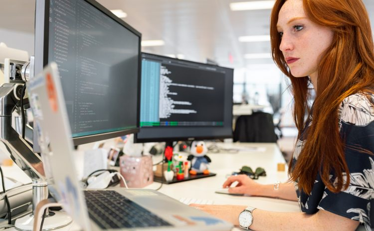 Who is In Charge of Software Application Development